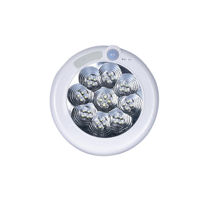 AS-ZFJC-EXW嵌入筒式应急照明灯